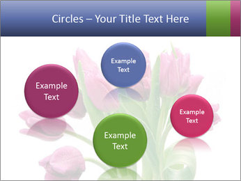 Bouquet of Purple Tulips PowerPoint Templates - Slide 77