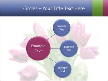 Bouquet of Purple Tulips PowerPoint Templates - Slide 79