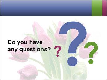 Bouquet of Purple Tulips PowerPoint Templates - Slide 96