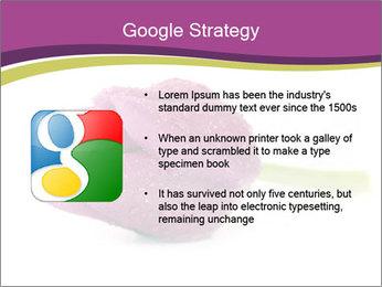 Wet Purple Tulip PowerPoint Templates - Slide 10