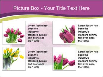 Wet Purple Tulip PowerPoint Templates - Slide 14