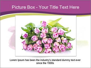 Wet Purple Tulip PowerPoint Templates - Slide 16