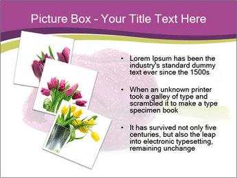 Wet Purple Tulip PowerPoint Templates - Slide 17