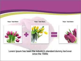 Wet Purple Tulip PowerPoint Templates - Slide 22