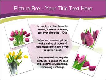 Wet Purple Tulip PowerPoint Templates - Slide 24