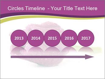 Wet Purple Tulip PowerPoint Templates - Slide 29