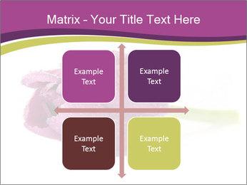 Wet Purple Tulip PowerPoint Templates - Slide 37