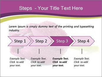 Wet Purple Tulip PowerPoint Templates - Slide 4