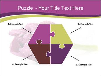 Wet Purple Tulip PowerPoint Templates - Slide 40