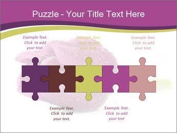 Wet Purple Tulip PowerPoint Templates - Slide 41