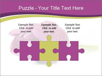 Wet Purple Tulip PowerPoint Templates - Slide 42