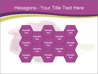 Wet Purple Tulip PowerPoint Templates - Slide 44