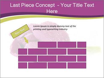 Wet Purple Tulip PowerPoint Templates - Slide 46