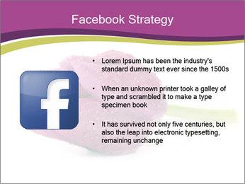 Wet Purple Tulip PowerPoint Templates - Slide 6