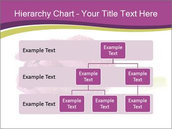 Wet Purple Tulip PowerPoint Templates - Slide 67