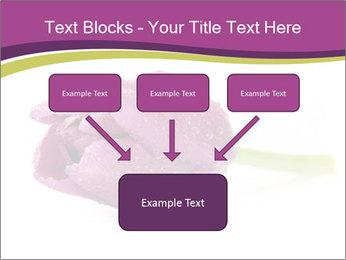 Wet Purple Tulip PowerPoint Templates - Slide 70