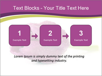 Wet Purple Tulip PowerPoint Templates - Slide 71