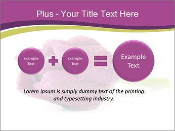 Wet Purple Tulip PowerPoint Templates - Slide 75