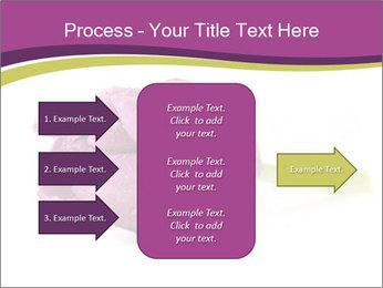 Wet Purple Tulip PowerPoint Templates - Slide 85