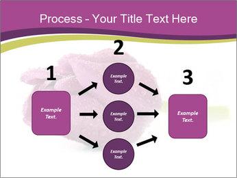 Wet Purple Tulip PowerPoint Templates - Slide 92