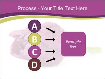 Wet Purple Tulip PowerPoint Templates - Slide 94