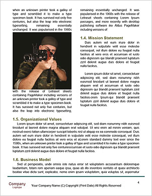 0000063503 Word Template - Page 4