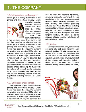 0000063508 Word Template - Page 3