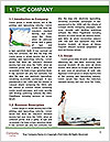 0000063516 Word Template - Page 3