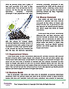 0000063525 Word Templates - Page 4