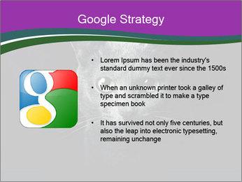 Portrait of Grey Cat PowerPoint Templates - Slide 10