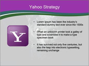 Portrait of Grey Cat PowerPoint Templates - Slide 11