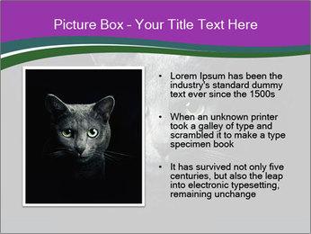 Portrait of Grey Cat PowerPoint Templates - Slide 13