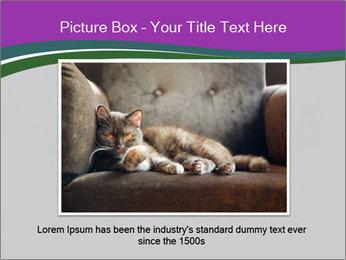 Portrait of Grey Cat PowerPoint Templates - Slide 15