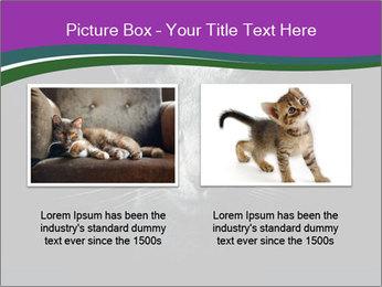 Portrait of Grey Cat PowerPoint Templates - Slide 18
