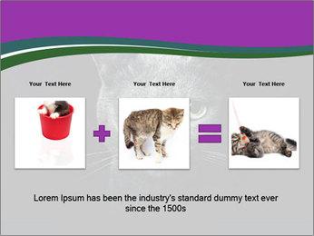 Portrait of Grey Cat PowerPoint Templates - Slide 22