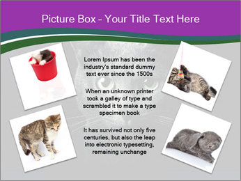 Portrait of Grey Cat PowerPoint Templates - Slide 24
