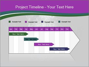 Portrait of Grey Cat PowerPoint Templates - Slide 25