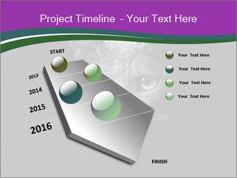 Portrait of Grey Cat PowerPoint Templates - Slide 26