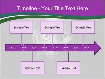 Portrait of Grey Cat PowerPoint Templates - Slide 28