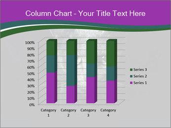 Portrait of Grey Cat PowerPoint Templates - Slide 50