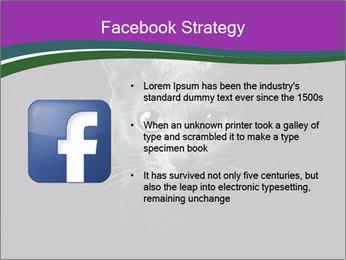 Portrait of Grey Cat PowerPoint Templates - Slide 6