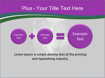 Portrait of Grey Cat PowerPoint Templates - Slide 75