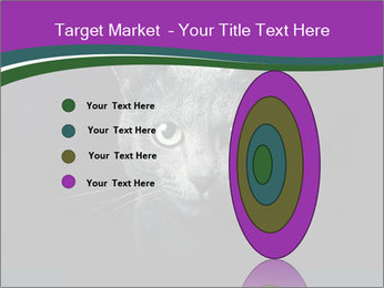 Portrait of Grey Cat PowerPoint Templates - Slide 84