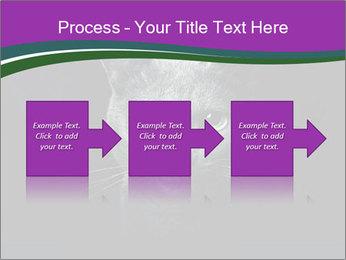 Portrait of Grey Cat PowerPoint Templates - Slide 88
