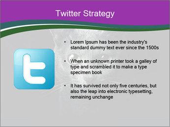 Portrait of Grey Cat PowerPoint Templates - Slide 9