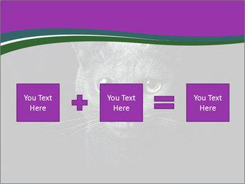 Portrait of Grey Cat PowerPoint Templates - Slide 95