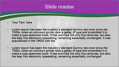 Portrait of Grey Cat PowerPoint Template - Slide 2