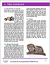 0000063528 Word Templates - Page 3