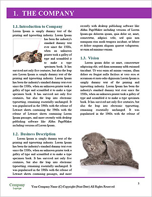 0000063528 Word Template - Page 3