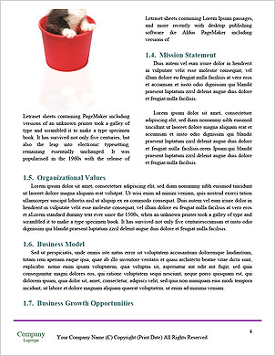 0000063528 Word Template - Page 4